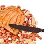 Food homogenizer